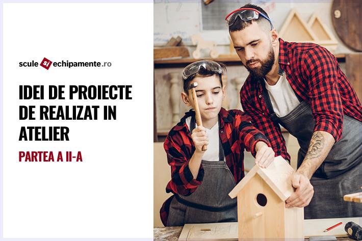idei de proiecte de realizat in atelier
